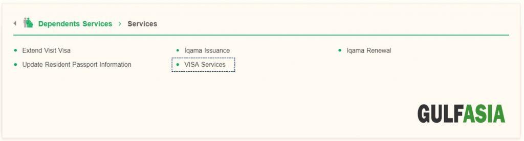 Click on Visa services